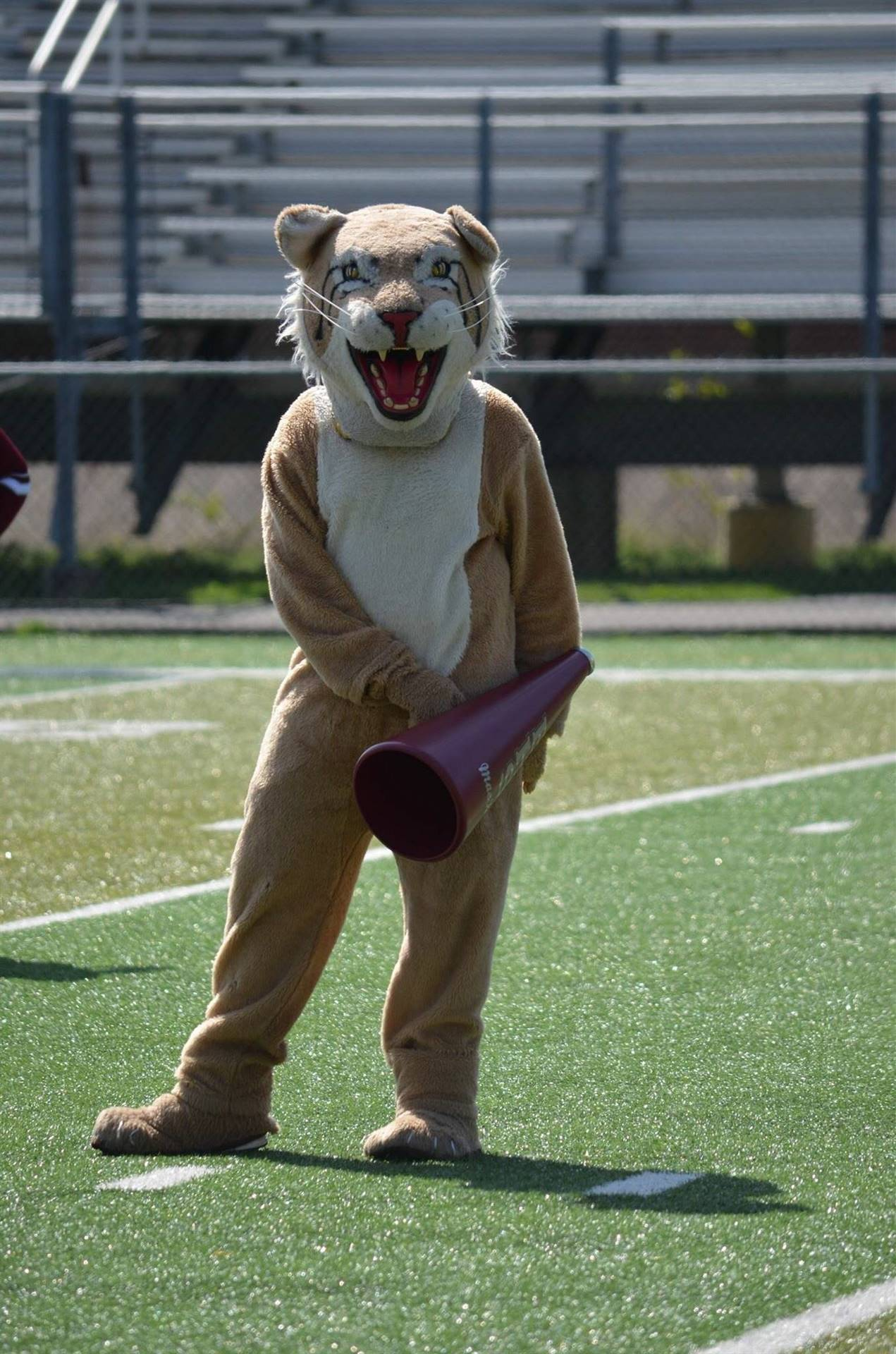 Bobcat - Leading the fans in cheers!